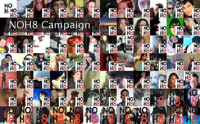 NOH8 Campaign  Twibute 100