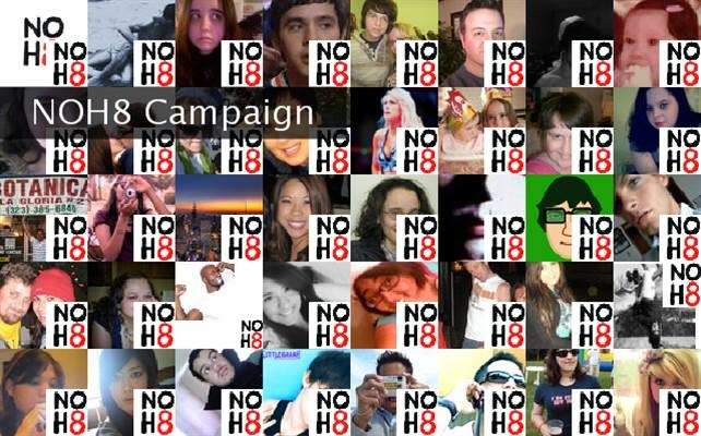 NOH8 Campaign  Twibute 50