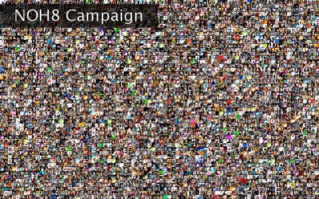 NOH8 Campaign  Twibute 5000