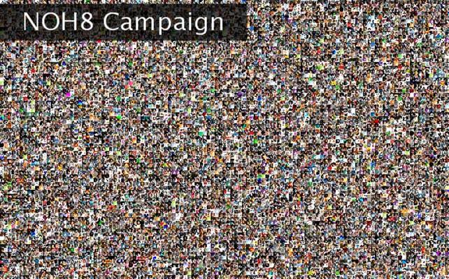 NOH8 Campaign  Twibute 10000