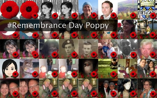#Remembrance Day Poppy Twibute 50
