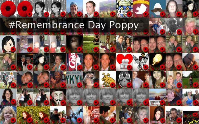 #Remembrance Day Poppy Twibute 100