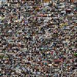 NederlandSchreeuwtomCultuur Twibute 2500