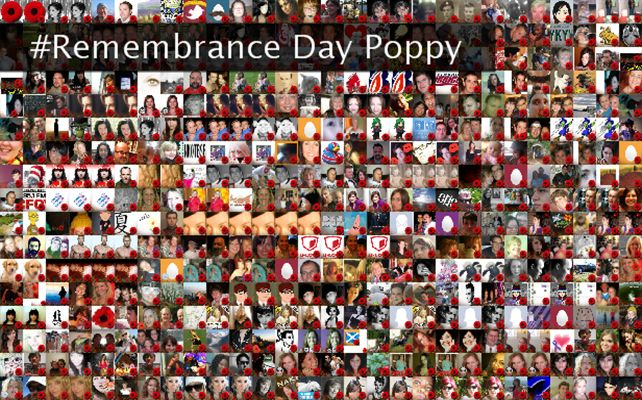 #Remembrance Day Poppy Twibute 500