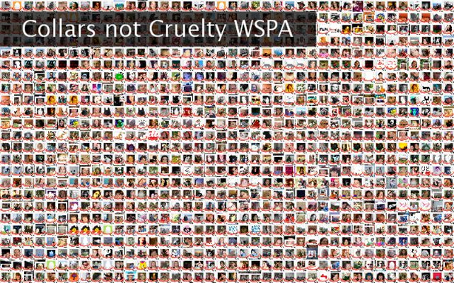 Collars not Cruelty WSPA  Twibute 1000