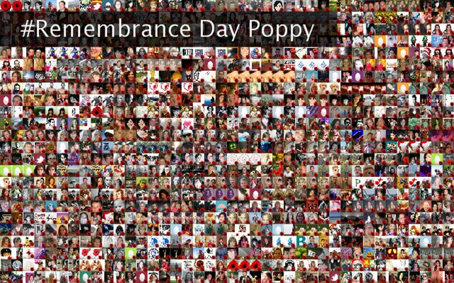 #Remembrance Day Poppy Twibute 1000