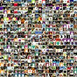 CSA Pure Protea (Twitter) Twibute 500