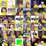 Alex's Lemonade Twibute 50