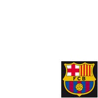 FCB - Més que un club