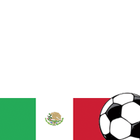 World Cup 2010: Mexico