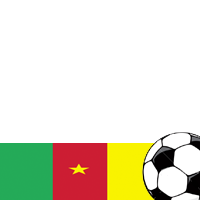 World Cup 2010: Cameroon