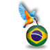 Brazil with Kingfisher #bra