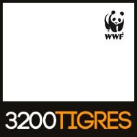WWF 3200 Tigres