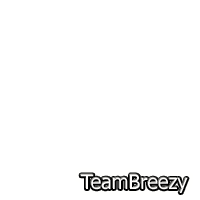 Chris Brown Team Breezy