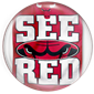 see red chicago bulls