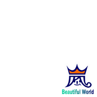 ARASHI  Beautiful World rogo
