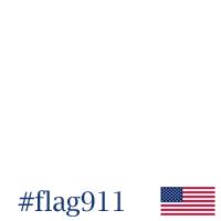Flag911