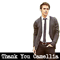 Thank You Camellia