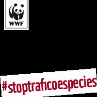 #stoptraficoespecies