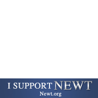Newt 2012 Support