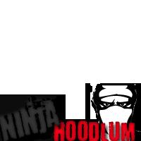 Ninja Hoodlums - CR