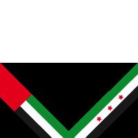 uae4syria