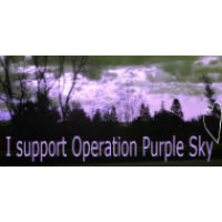 Operation Purple Sky