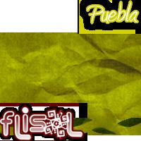Flisol Puebla 2012