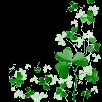 St Patrick's Day #stpats