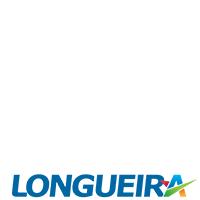 Pablo Longueira Presidente