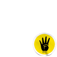 AntiCoup  R4BIA