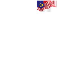 FLY THE MALAYSIAN FLAG