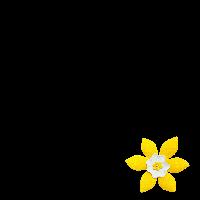 Daffodil Month 2013