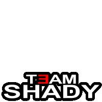 Team Shady