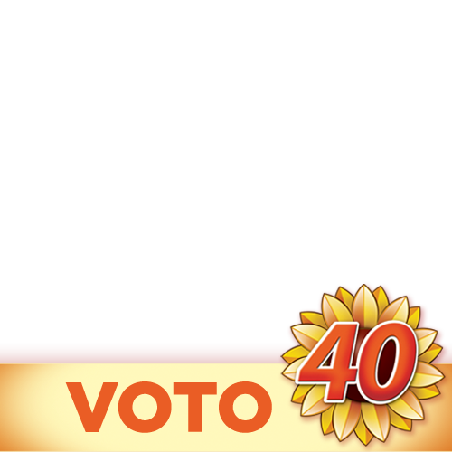 voto40